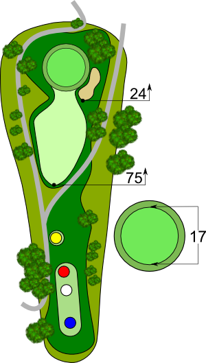 Hole 11 Description